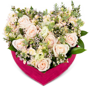꽃상자 p516